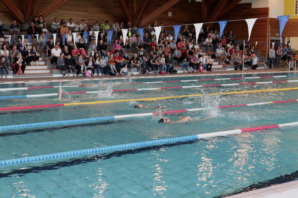Rencontre école de nage 20/05